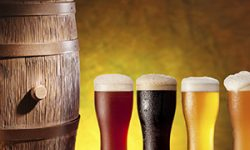Craft Beer and Food Pairing Tips