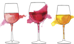 5 Best Summer Wines
