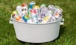 The Summer of Hard Seltzer: Top 5 Brands