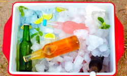 What Are the Best Drinks to Bring to a BYOB Party?